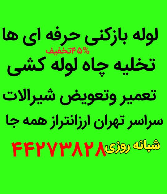 Negar_26022019_165812