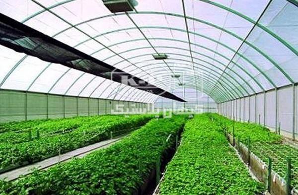 تولید کننده انواع نایلون کشاورزی ونایلون عریض و نایلون شیرینگ و استرچ پالت بند