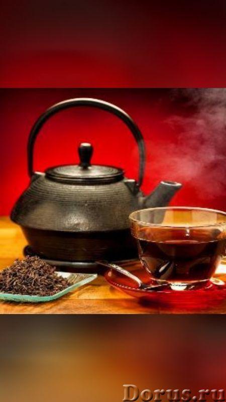 فروش چای ایرانی اصل 09365499924