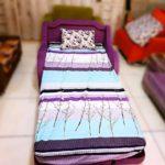 کاناپه و مبل تختخواب شو